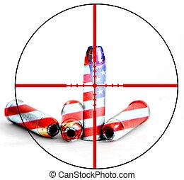 contrôle, amendement, seconde, fusil