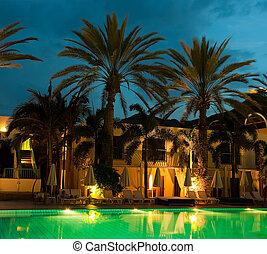 contra, árboles de palma, noche, fondo, piscina, hoteles