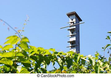 contra, birdhouse, sky.