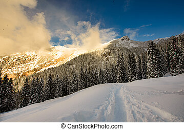 Contrasts of sunset lights in winter landscape by snow in the mountains