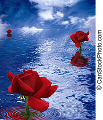 Contrasts of the Nature - Digital Graphics. Photoshop ...