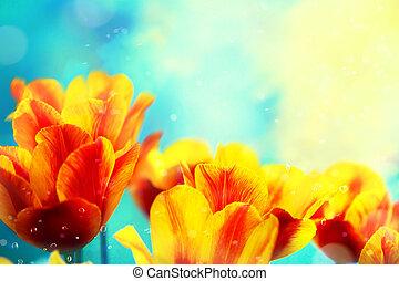 contre, rouges, bleu, nature, fleurs, tulipe, floral, ciel, fond, printemps