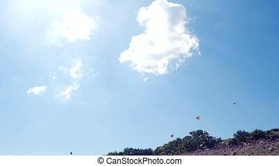 contre, voler, sky., papillons, lent, mouvements, appareil photo, bleu, sur, lotissements, beau, champ, butterflies., mouvement