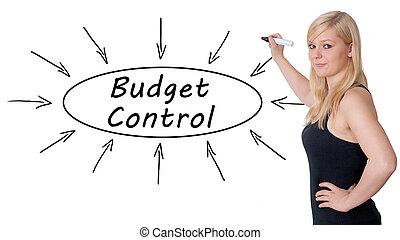 controle, orçamento