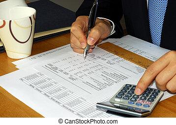 controleren, de, financiële verklaring