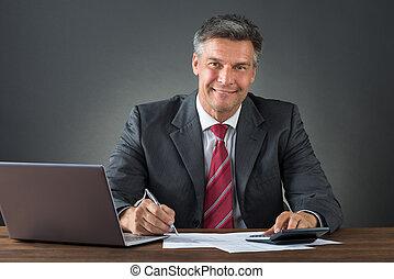 controleren, zakenman, rekeningen, bureau