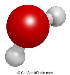 conv, molecule., átomos, agua, esferas, (h2o), representado