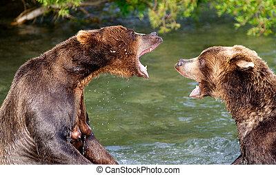 conversation., björn
