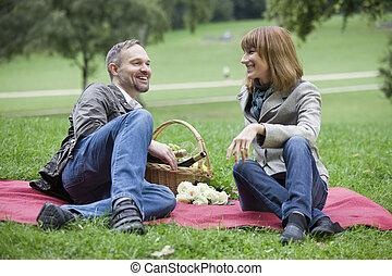 conversazione, vicino, picnic