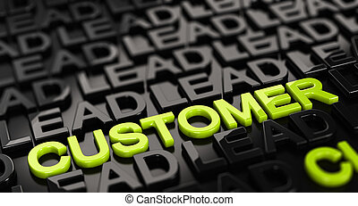 Convert Leads into Customers