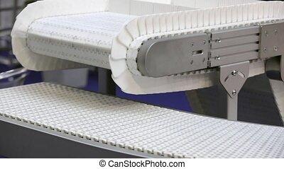Conveyor Belt Transport System in Distribution Warehouse