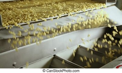 Conveyor line for macaroni production. - Pasta, macaroni,...
