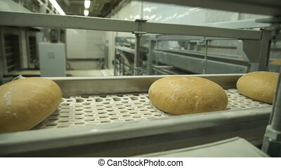 Conveyor production of bread at a bakery factory