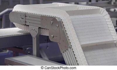 Conveyor System - Conveyor Belt Transport System in Factory