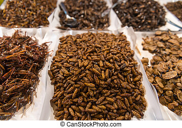 Cooked, Edible Insects and Grubs for Human Consumption at a Public Market in Southeast Asia