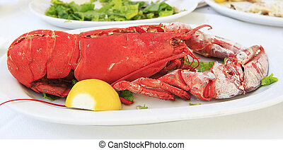 Cooked lobster on a white plate