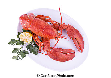 Cooked lobster isolated on white background. Top view.