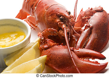 cooked lobster with butter and lemon wedges - whole lobster...