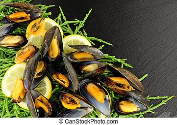 Cooked Mussels And Samphire