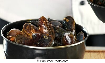 Cooked mussels close up. Steamed clams in white wine.