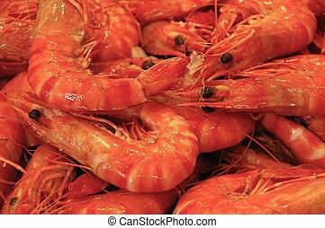 Cooked Prawns - Crustaceans