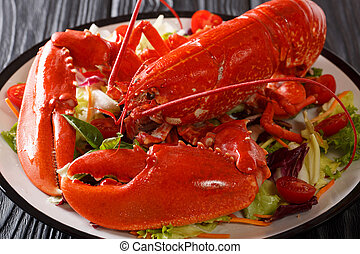 Cooked sea lobster with fresh vegetable salad on a plate close-up. horizontal