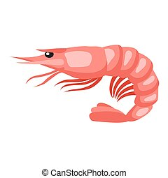 Cooked tiger shrimp. Isolated illustration of seafood on white background