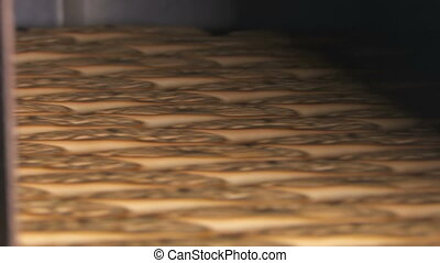 Cookie is baked in the oven. Close-up. - Cookies on a...