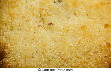 Cookie texture close up background