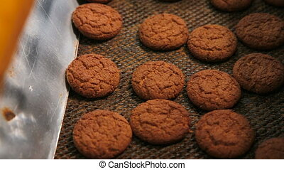Cookies are moving on the conveyor line. Oatmeal cookies are...