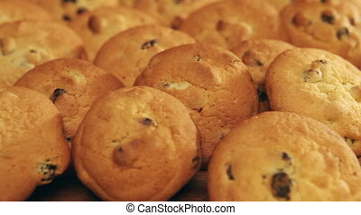 Cookies biscuit with raisin ,Close up in a sunny day
