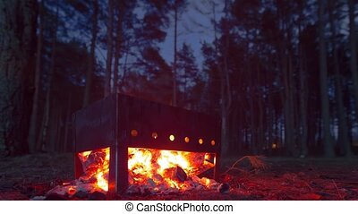 Cooking a barbecue on the grill at night in the woods