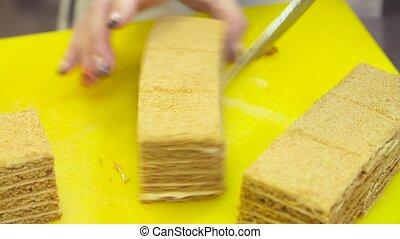 Female chef hands cutting cake