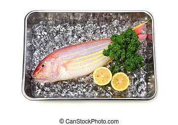 Cooking ingredient series golden threadfin bream. available for clipping work.