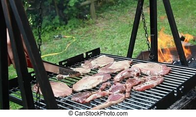 barbecue - cooking meat on a barbecue