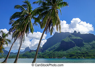 Cook's Bay and lagoon in Moorea Island