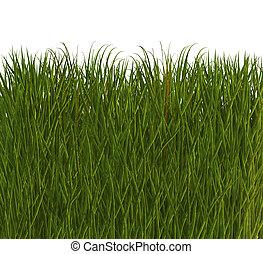 cool 3D grass