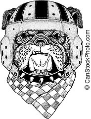 Cool animal wearing rugby helmet Extreme sport game Bulldog Hand drawn vintage image for t-shirt, tattoo, emblem, badge, logo, patch