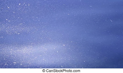 Cool Blue Glittery Water Surface over Submerged Aquatic...