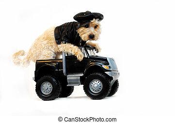 Cool Dude in Getaway Car - Getaway Car complete with Shitzoo...