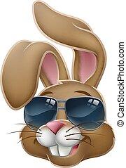 Cool Easter Bunny Rabbit in Sunglasses Cartoon