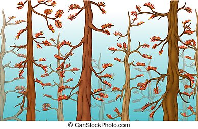Cool Forest With Trees Cartoon