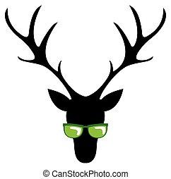 cool roebuck - roebuck with sunglasses on