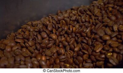 Cooling coffee beans after roasting. Roasting machine, close-up