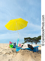 Funny dog is having a cooling down with water and parasol at the beach in the summer
