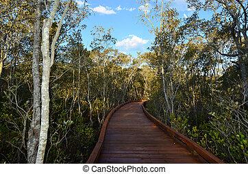 Coombabah Lakelands -Queensland Australia - Landscape of...
