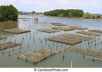 Coop in the coastal areas in Chanthaburi, Thailand.