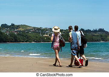Coopers Beach in Northland New Zealand