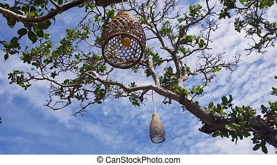 Coops lamps hanging decorations on the tree over blue summer...