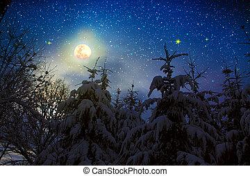 coperto, inverno, alberi abete, neve, pieno, paesaggio, moon.